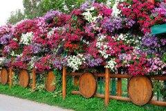 Оригинальный забор украшенный цветами