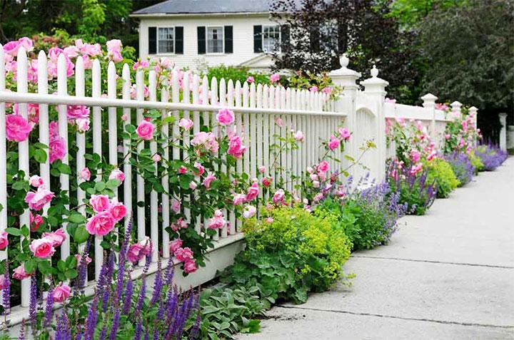 Использование растений для декорирования места возле ограды