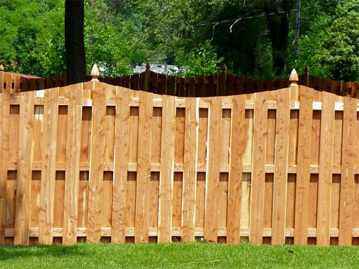 Ограда в саду
