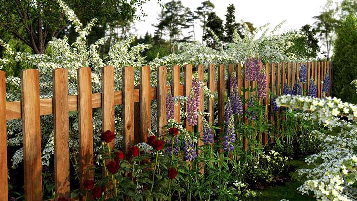 Садовая изгородь из штакетника