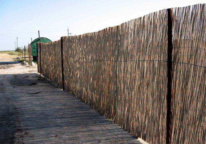 Забор из тросника
