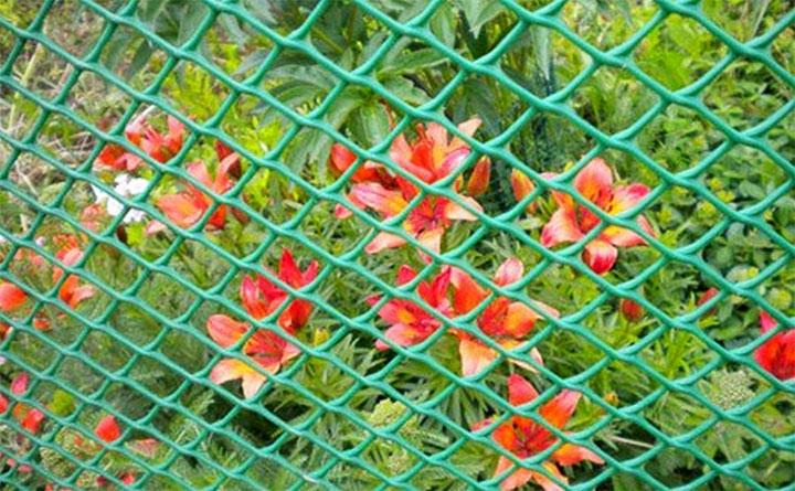 Заборная сетка из полимера