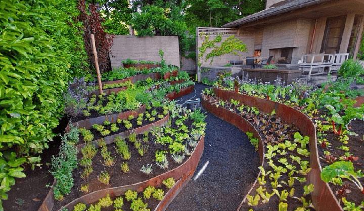 Ступенчатый огород на дачном участке