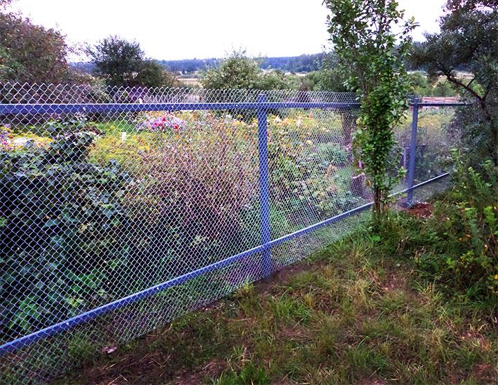 Виды заборов для дачи и сада