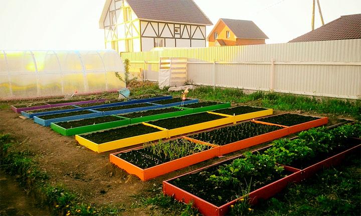 Садовый участок на закате солнца
