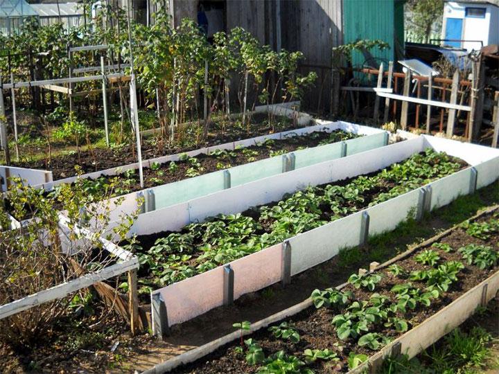 Зонирование огорода пластиковыми панелями