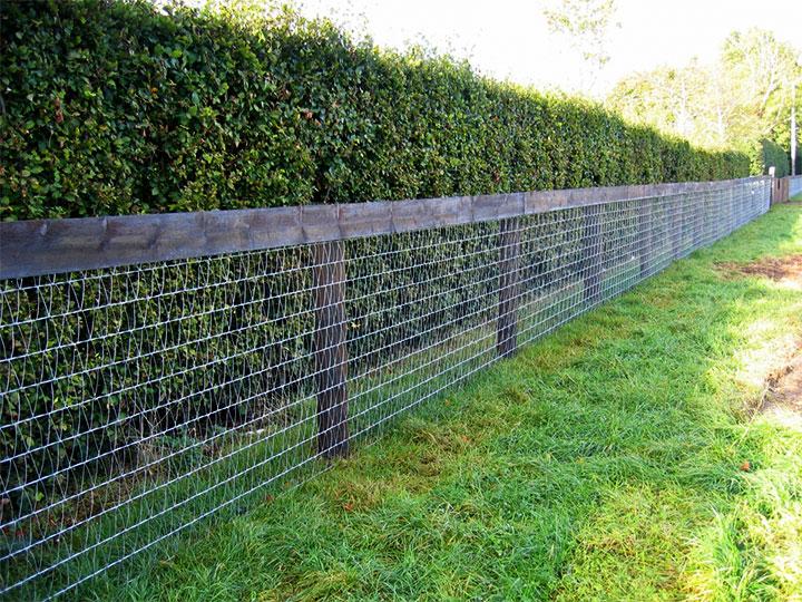 Садовый забор из сетки
